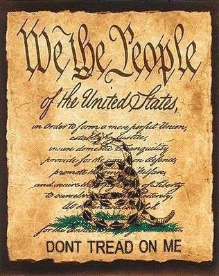 Don't Tread on Me | LibertarianChristians.com